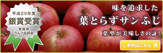 葉型がおいしさの証!【葉とらずりんご】