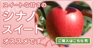 スイートな甘さの【シナノスイート】