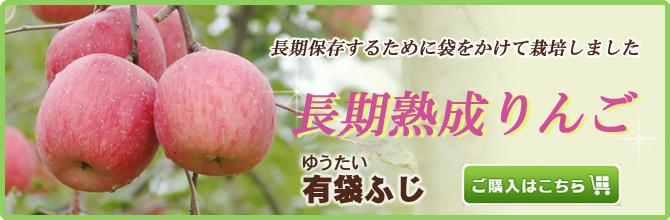 長期熟成りんご【有袋ふじ】販売中
