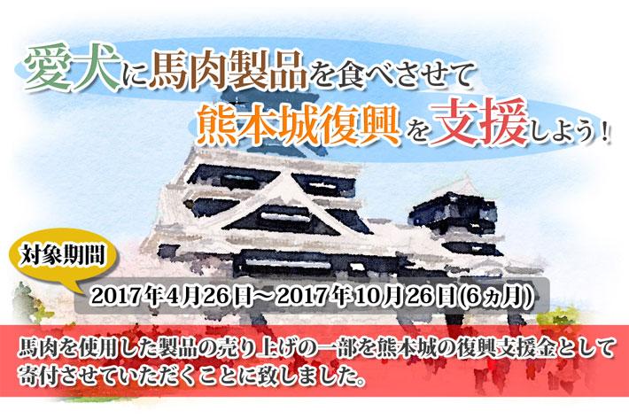 熊本城復興支援