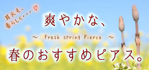 春のおすすめ特集