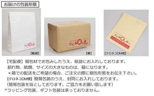 【宅配便】梱包材でお包みしたうえ、紙袋にお入れしております。